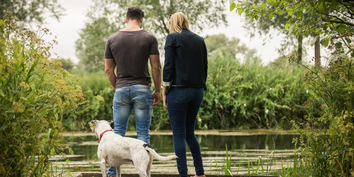 Caravan Park Hampshire Dogs Pool